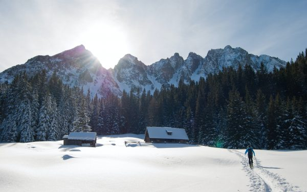narty ski-tour